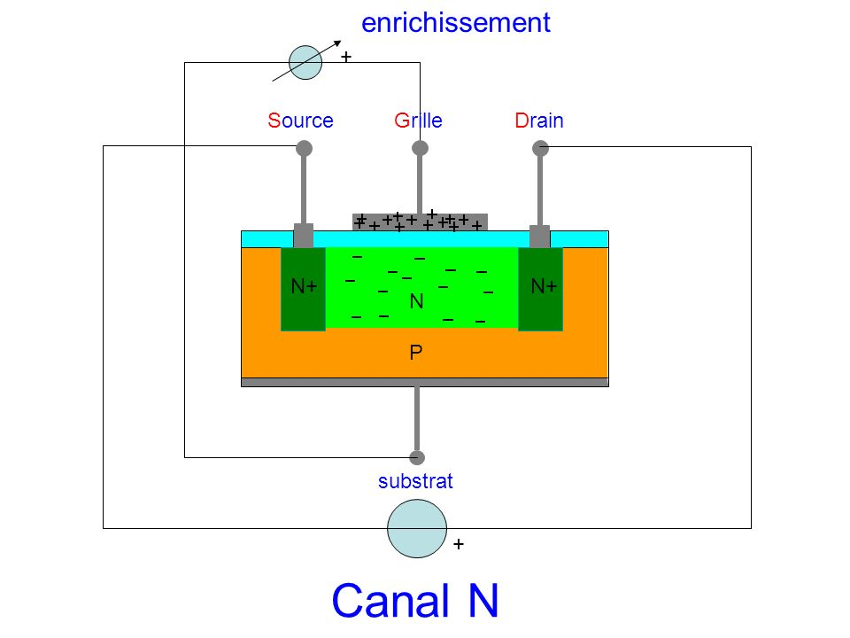 enrichissement + Source Grille Drain N+ N+ N P substrat + Canal N