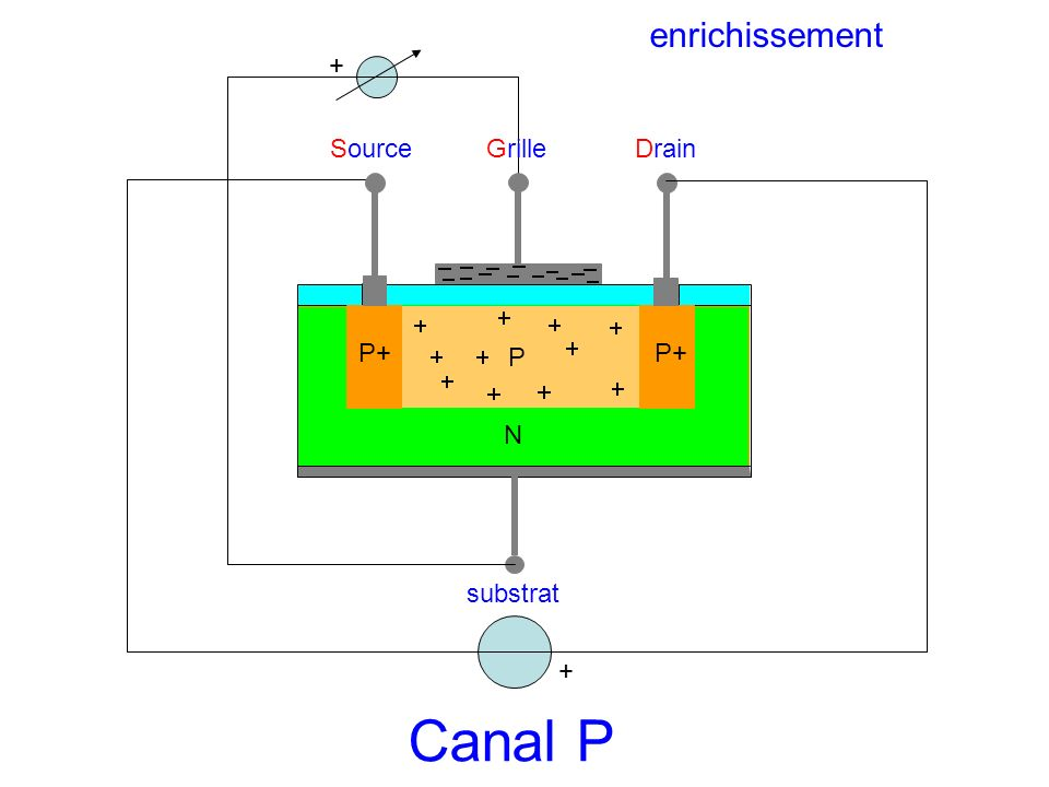 enrichissement + Source Grille Drain P+ P P+ N substrat + Canal P