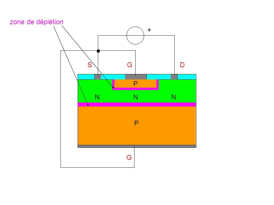 zone de déplétion + S G D P N N N P G