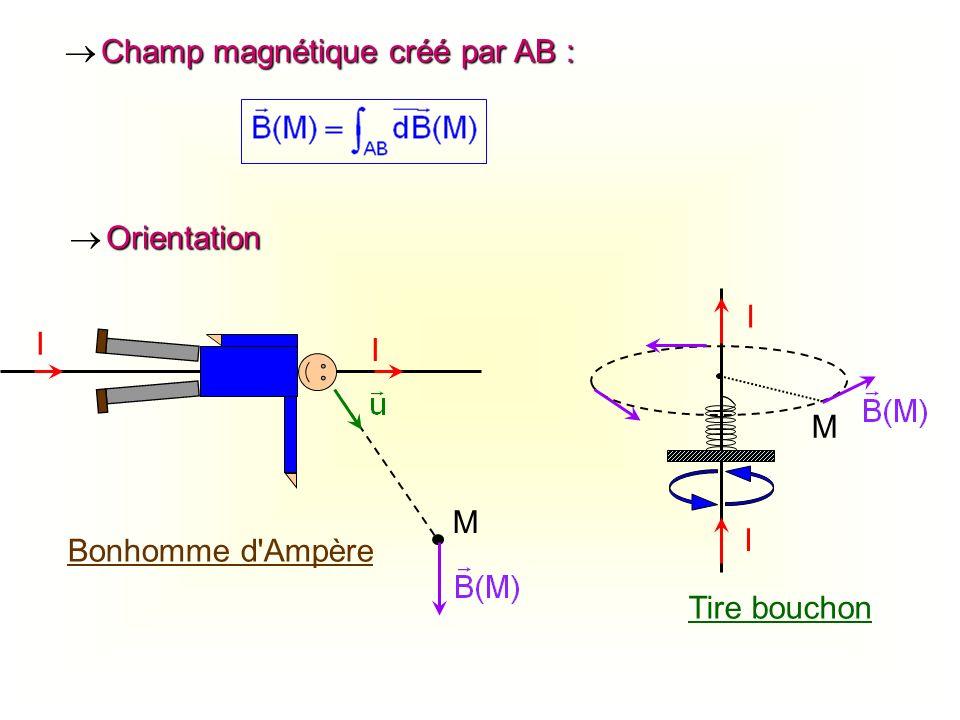  Champ magnétique créé par AB :