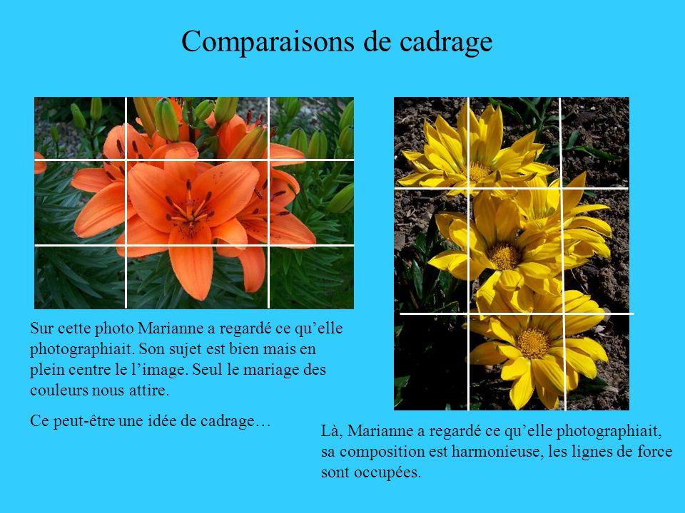 Comparaisons de cadrage