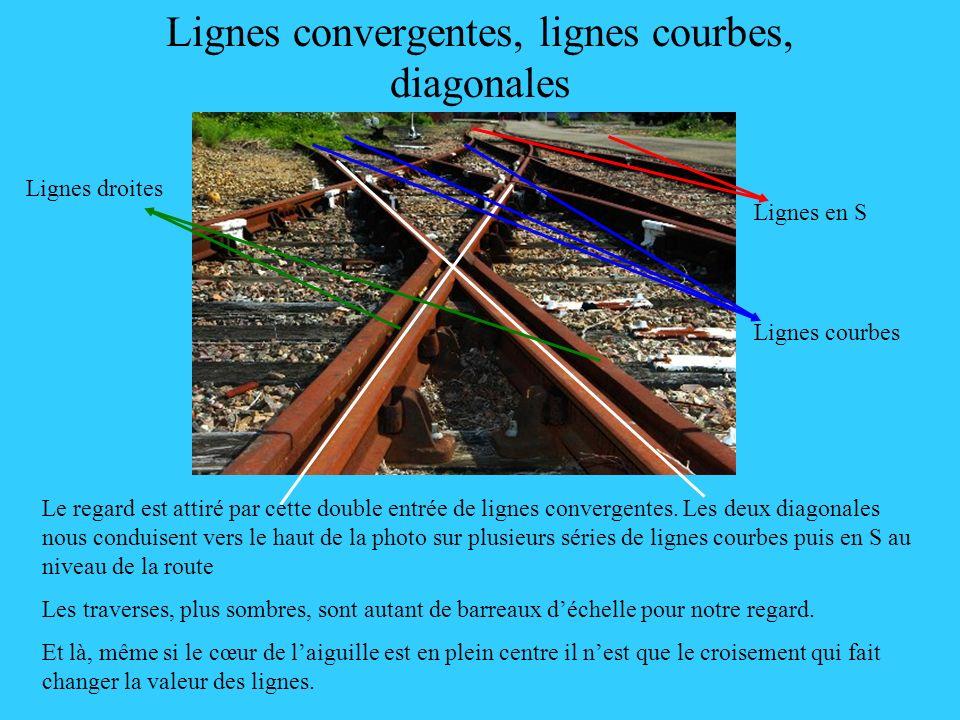 Lignes convergentes, lignes courbes, diagonales