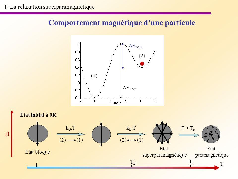 Comportement magnétique d'une particule