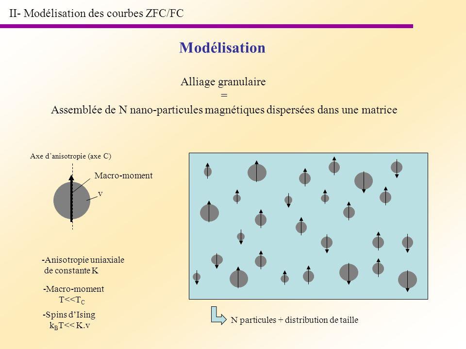 Assemblée de N nano-particules magnétiques dispersées dans une matrice