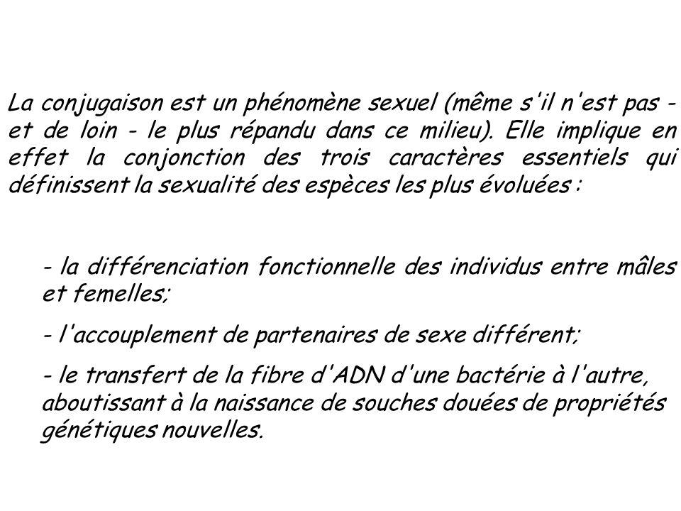 La conjugaison est un phénomène sexuel (même s il n est pas - et de loin - le plus répandu dans ce milieu). Elle implique en effet la conjonction des trois caractères essentiels qui définissent la sexualité des espèces les plus évoluées :