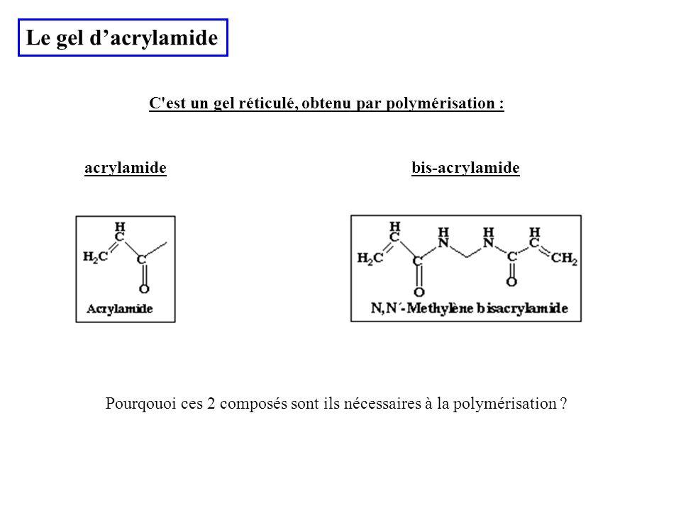 Le gel d'acrylamide C est un gel réticulé, obtenu par polymérisation :