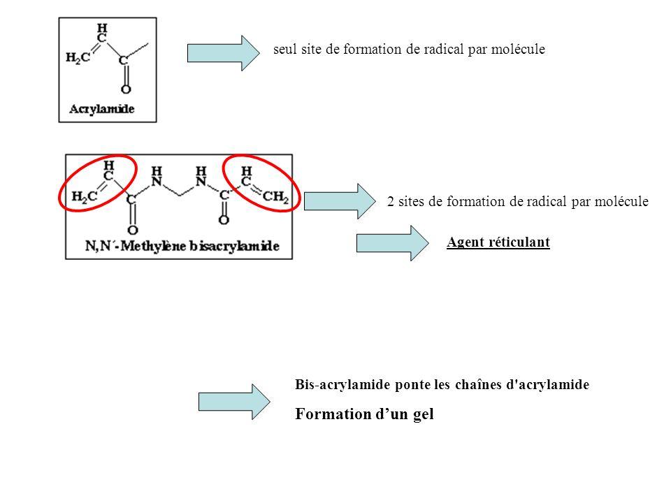 Formation d'un gel seul site de formation de radical par molécule