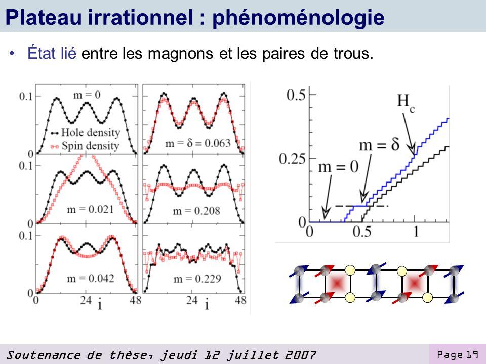 Plateau irrationnel : phénoménologie