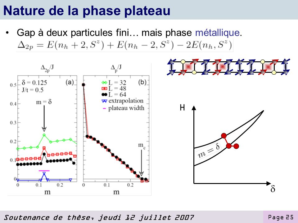Nature de la phase plateau