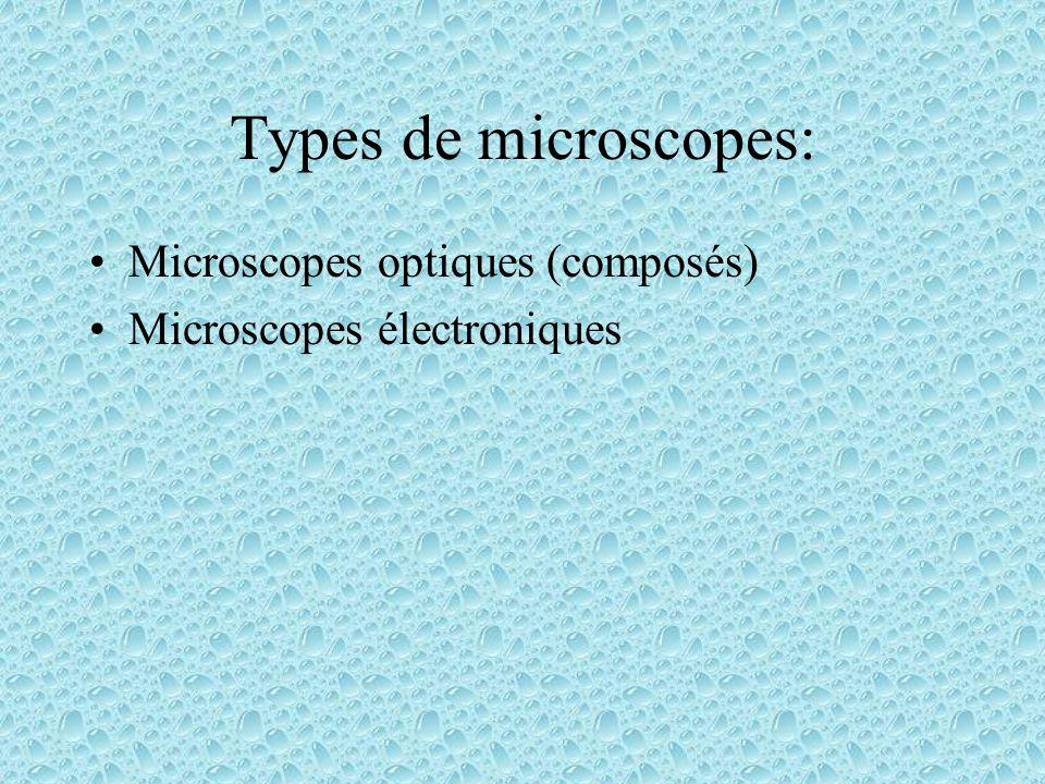 Types de microscopes: Microscopes optiques (composés)