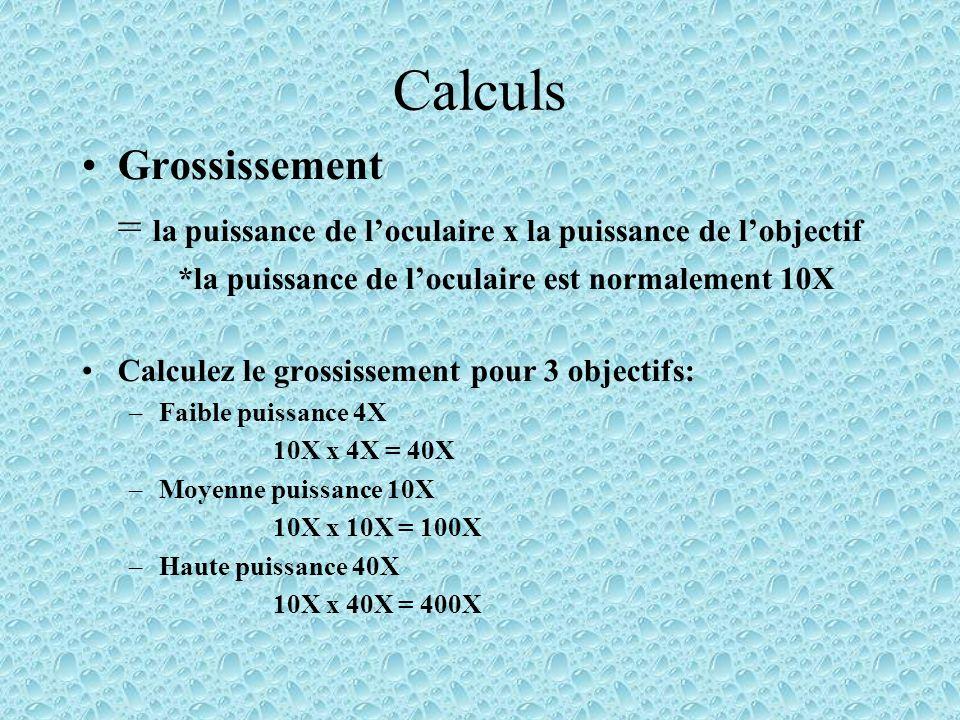 Calculs Grossissement