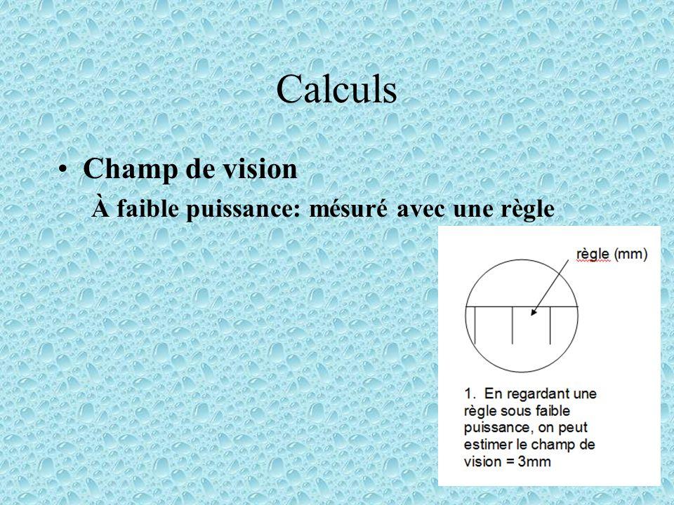 Calculs Champ de vision À faible puissance: mésuré avec une règle