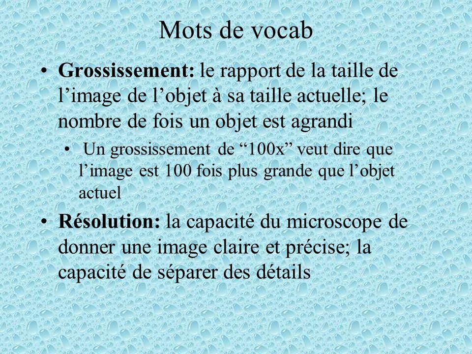 Mots de vocab Grossissement: le rapport de la taille de l'image de l'objet à sa taille actuelle; le nombre de fois un objet est agrandi.