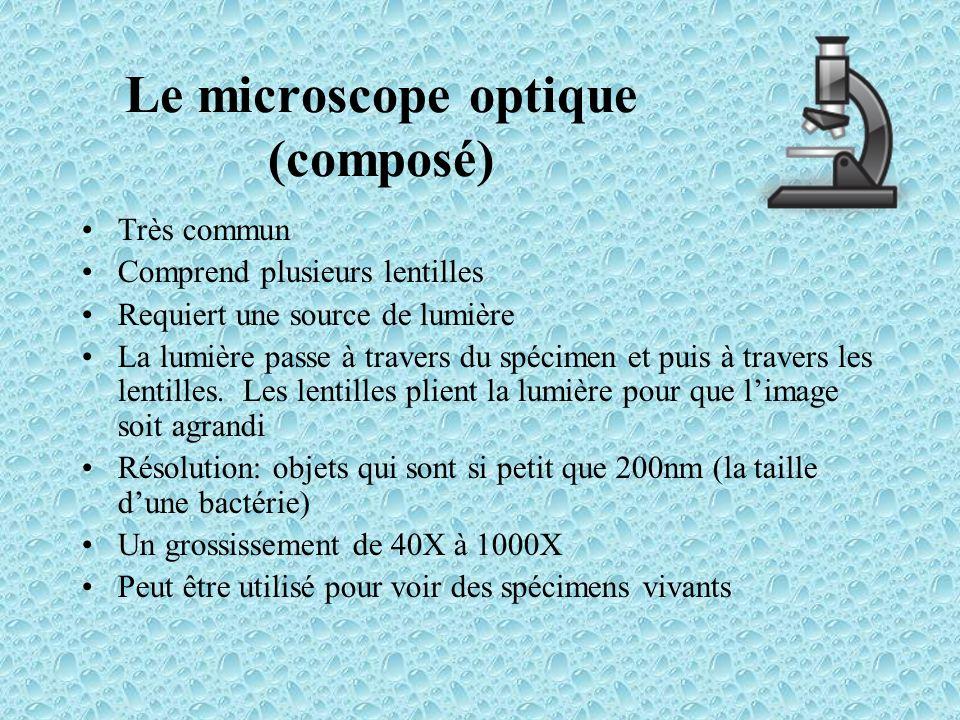 Le microscope optique (composé)