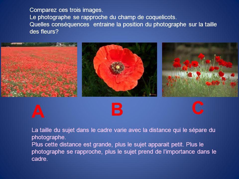 C B A Comparez ces trois images.