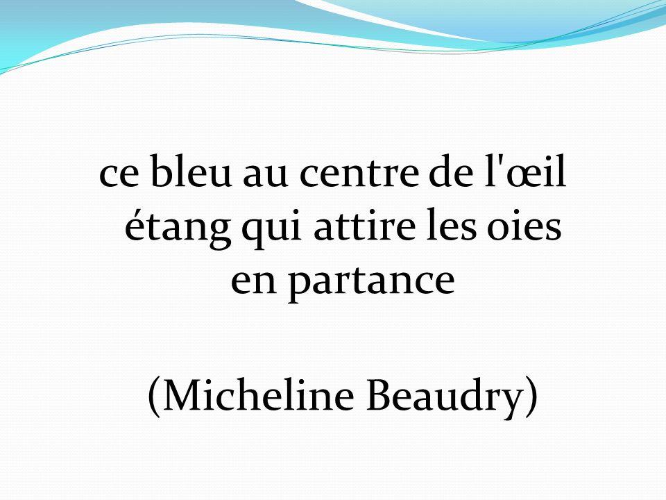 ce bleu au centre de l œil étang qui attire les oies en partance (Micheline Beaudry)