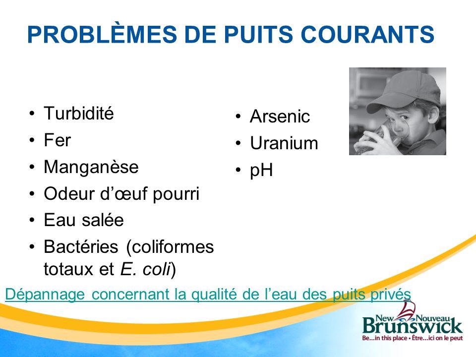 PROBLÈMES DE PUITS COURANTS