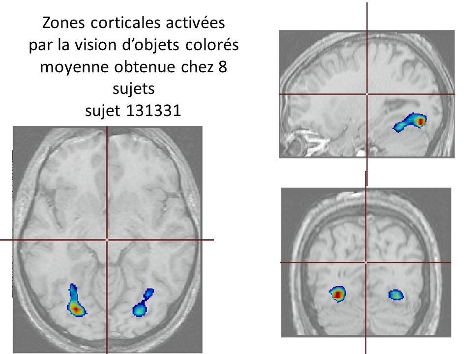 Zones corticales activées par la vision d'objets colorés moyenne obtenue chez 8 sujets sujet 131331