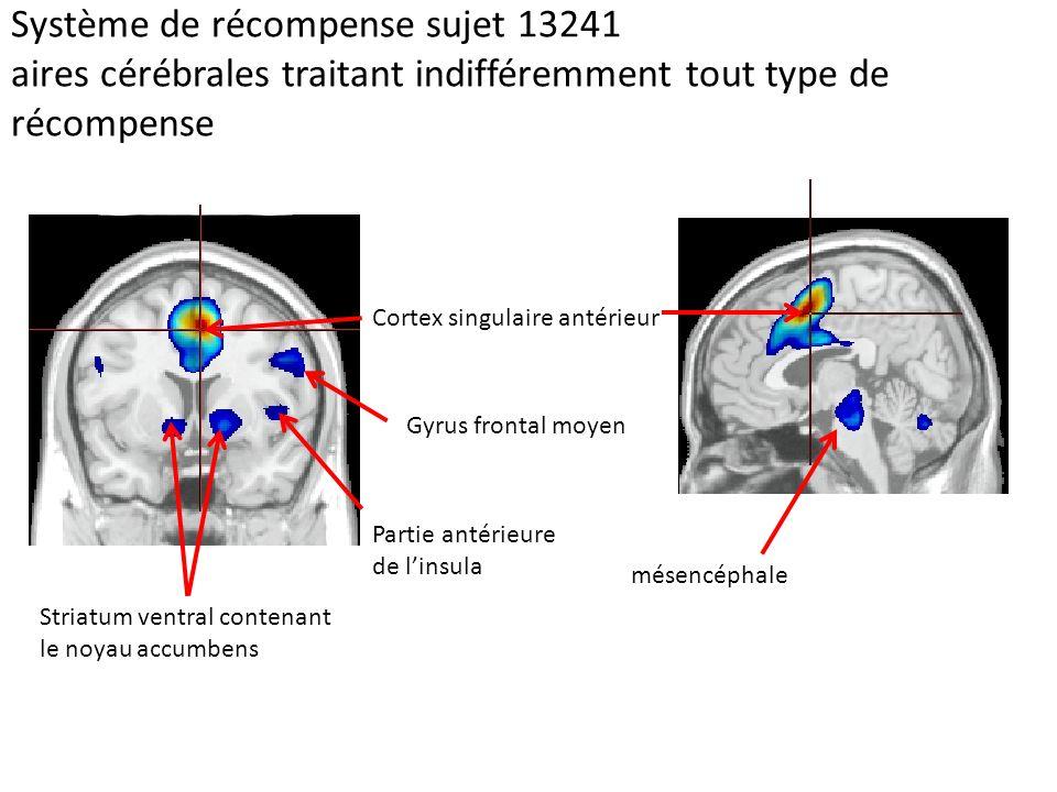 Système de récompense sujet 13241 aires cérébrales traitant indifféremment tout type de récompense