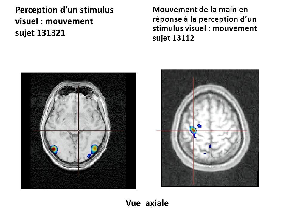 Perception d'un stimulus visuel : mouvement sujet 131321