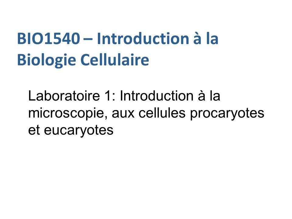 BIO1540 – Introduction à la Biologie Cellulaire