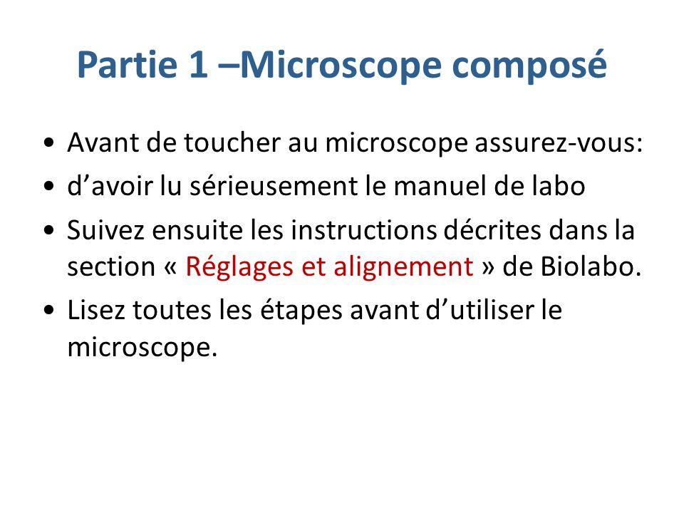Partie 1 –Microscope composé