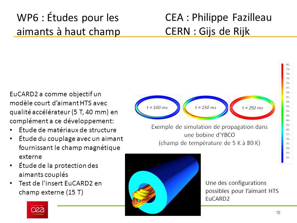 WP6 : Études pour les aimants à haut champ CEA : Philippe Fazilleau