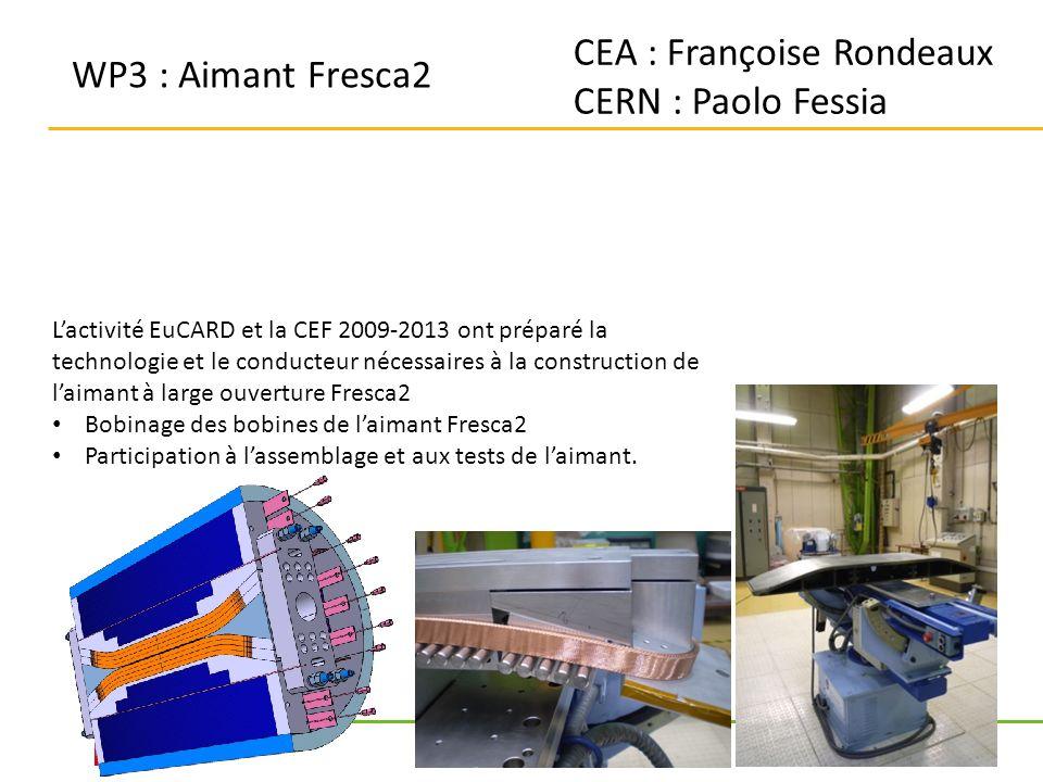 CEA : Françoise Rondeaux CERN : Paolo Fessia WP3 : Aimant Fresca2