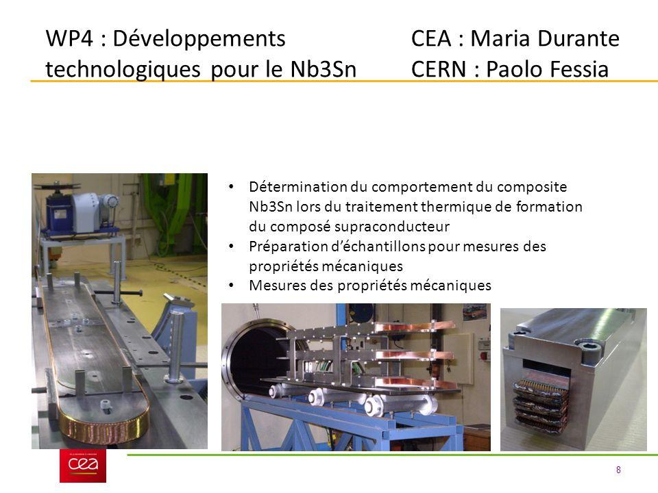 WP4 : Développements technologiques pour le Nb3Sn CEA : Maria Durante