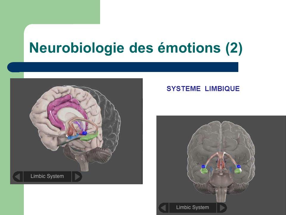 Neurobiologie des émotions (2)
