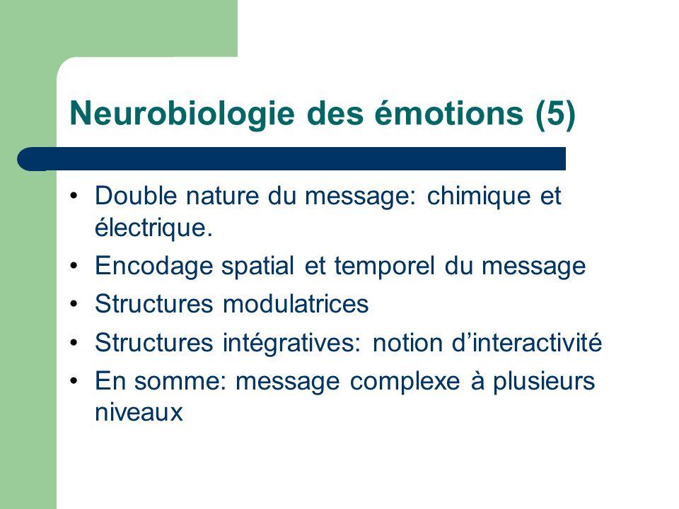 Neurobiologie des émotions (5)