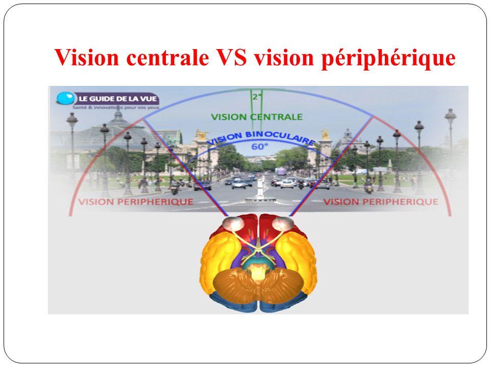Vision centrale VS vision périphérique