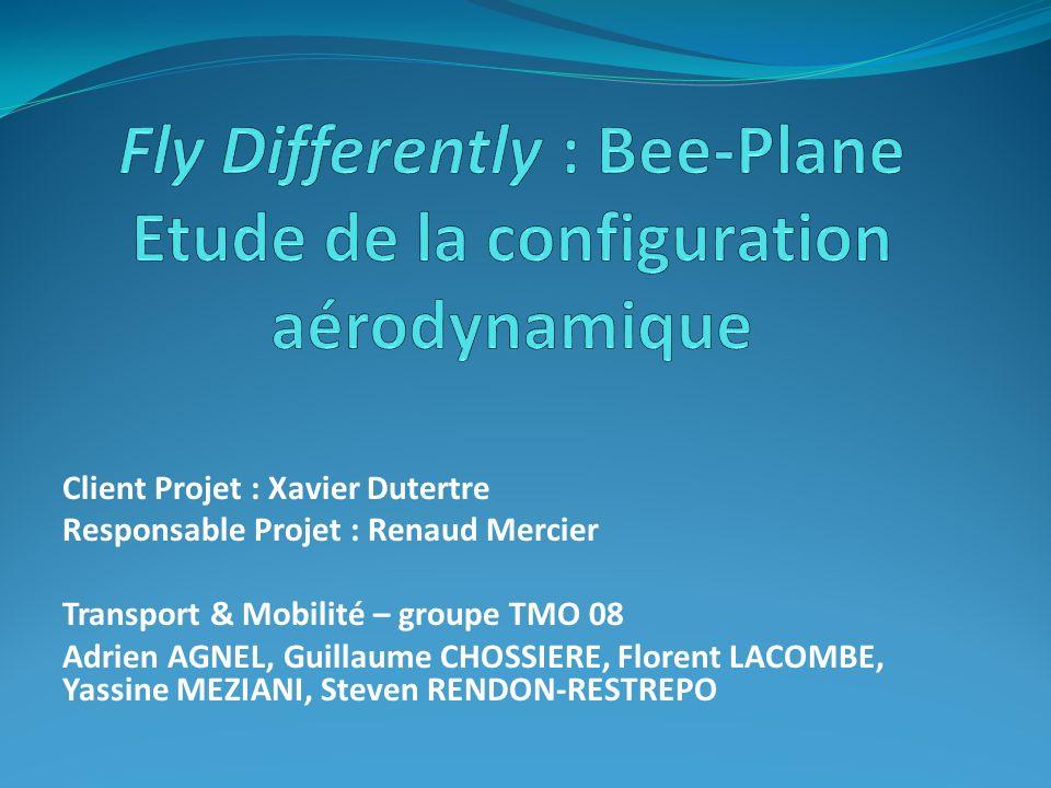 Fly Differently : Bee-Plane Etude de la configuration aérodynamique