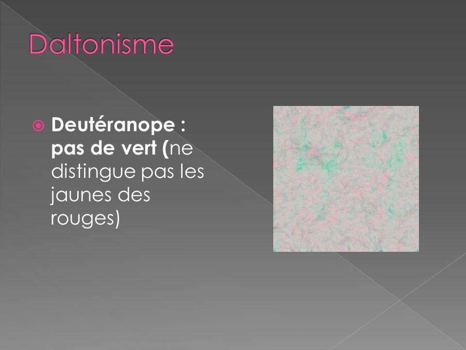 Daltonisme Deutéranope : pas de vert (ne distingue pas les jaunes des rouges)