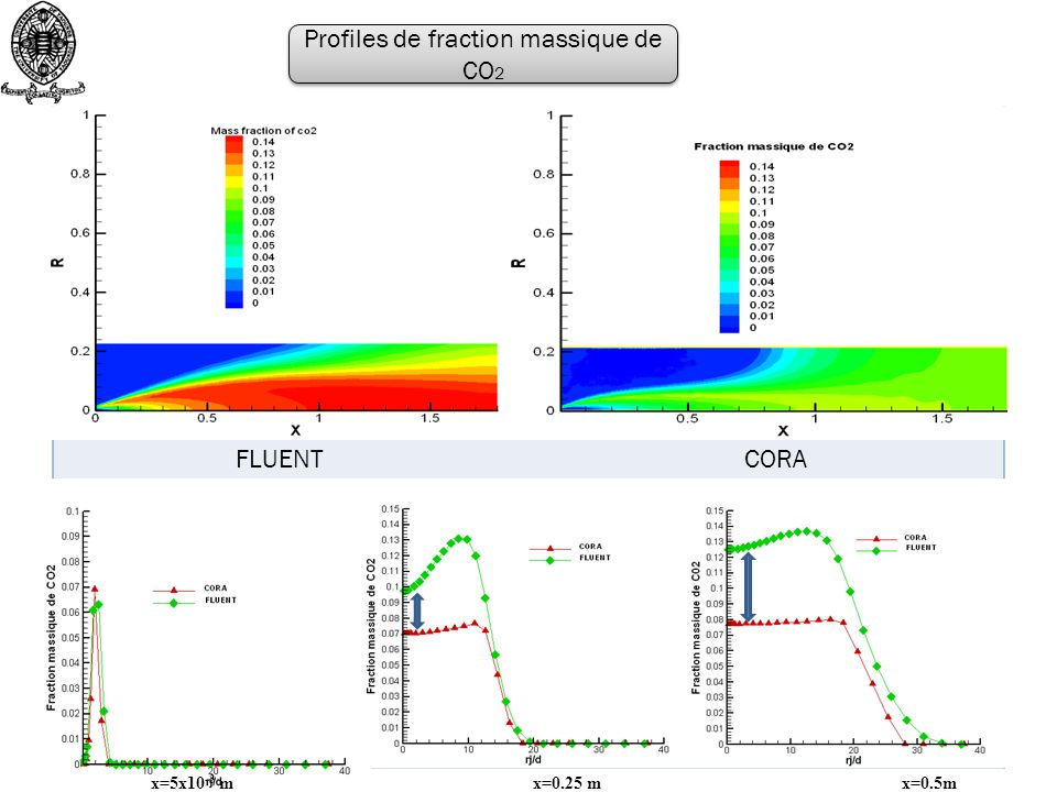Profiles de fraction massique de CO2
