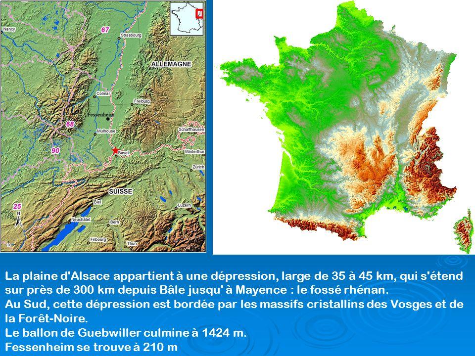 La plaine d Alsace appartient à une dépression, large de 35 à 45 km, qui s étend sur près de 300 km depuis Bâle jusqu à Mayence : le fossé rhénan.