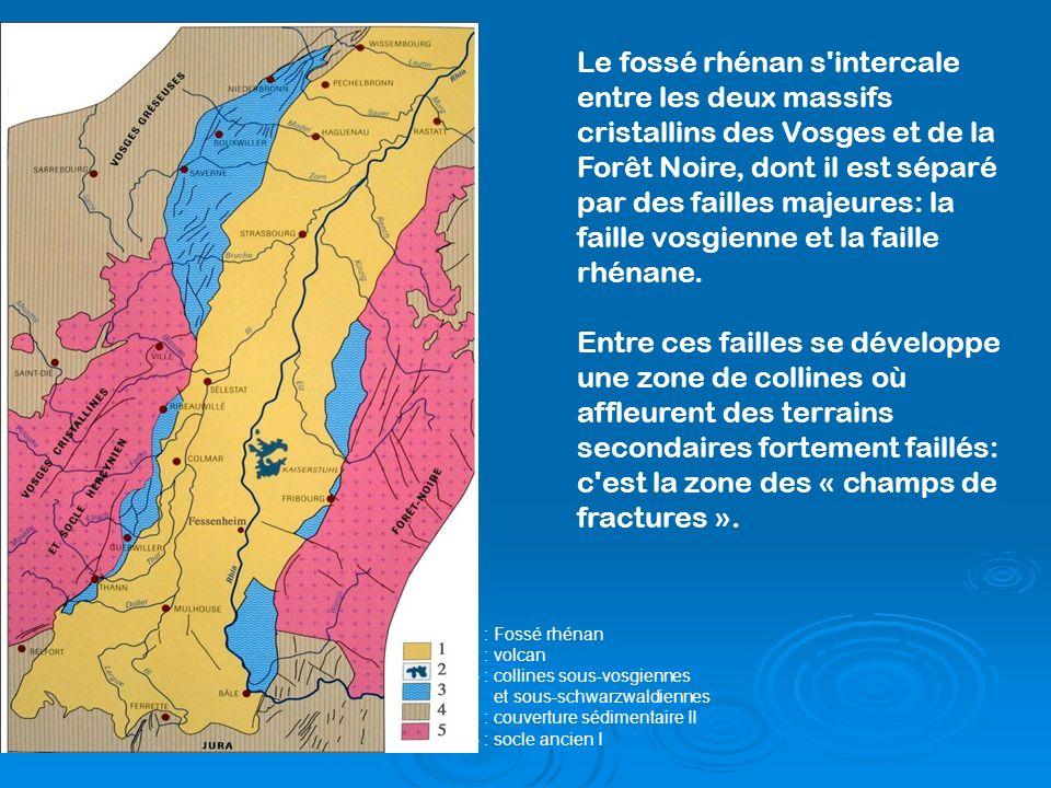 Le fossé rhénan s intercale entre les deux massifs cristallins des Vosges et de la Forêt Noire, dont il est séparé par des failles majeures: la faille vosgienne et la faille rhénane.
