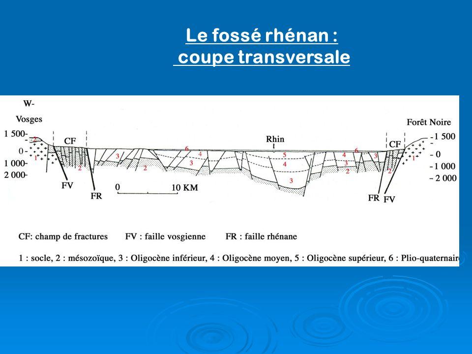 Le fossé rhénan : coupe transversale