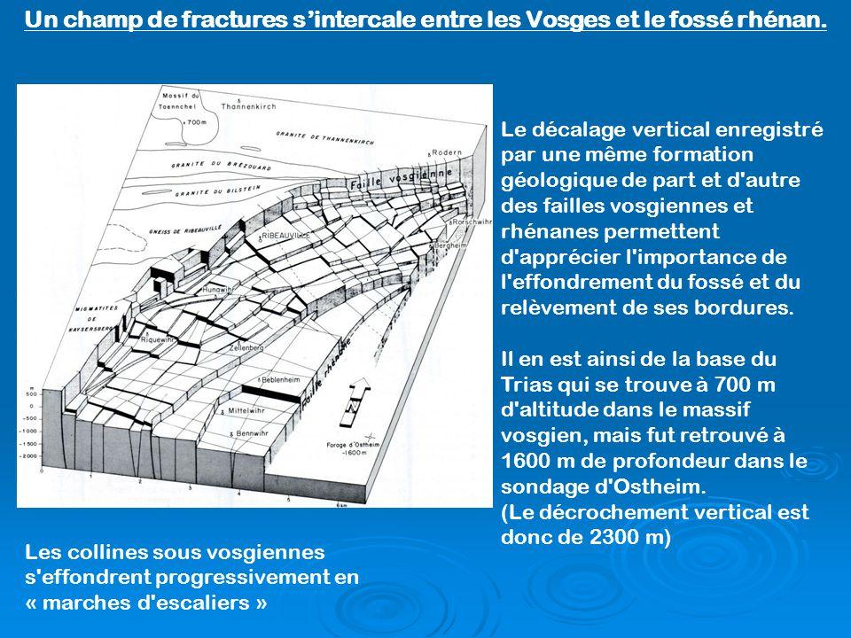 Un champ de fractures s'intercale entre les Vosges et le fossé rhénan.