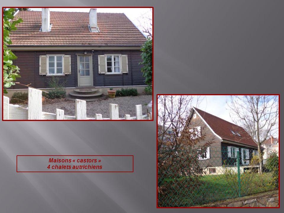 Maisons « castors » 4 chalets autrichiens
