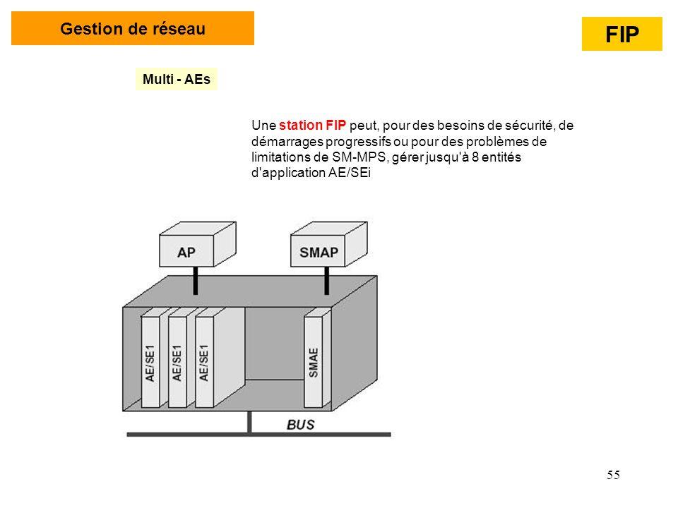 FIP Gestion de réseau Multi - AEs