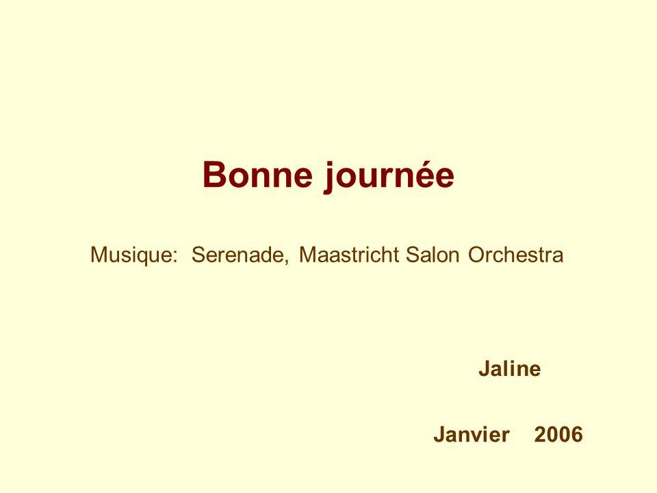Musique: Serenade, Maastricht Salon Orchestra