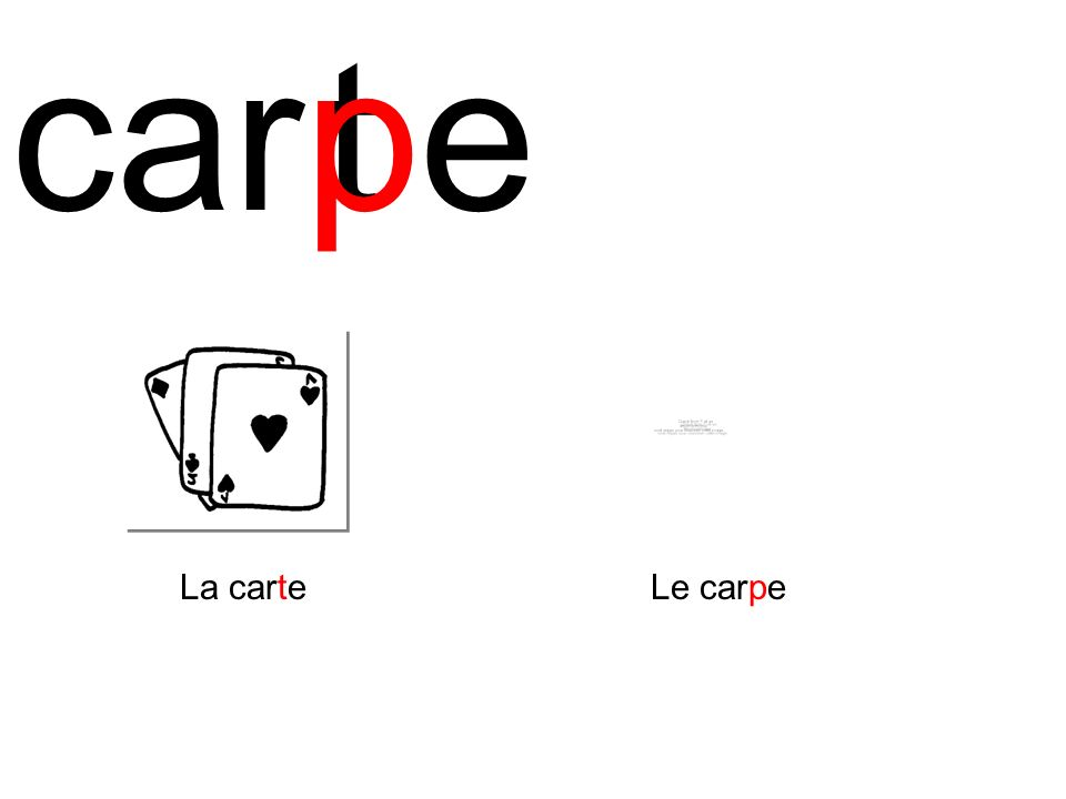 car p t e La carte Le carpe