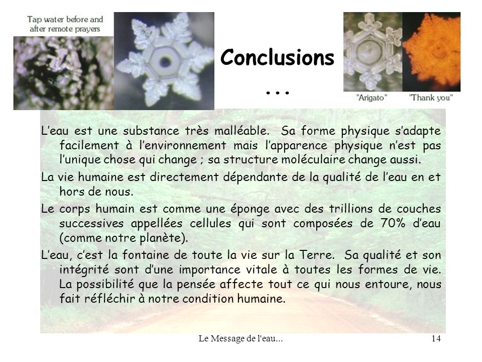 Conclusions ...