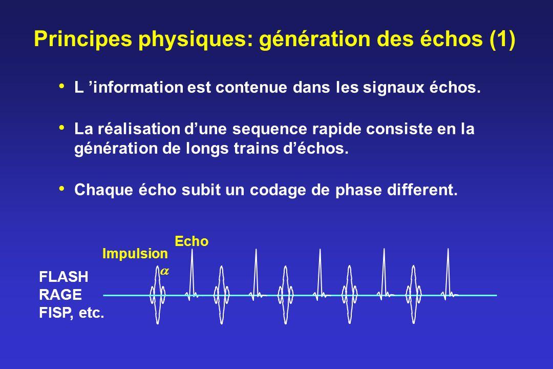 Principes physiques: génération des échos (1)