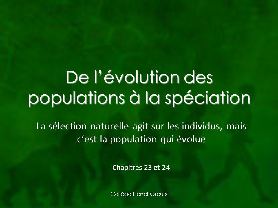 De l'évolution des populations à la spéciation