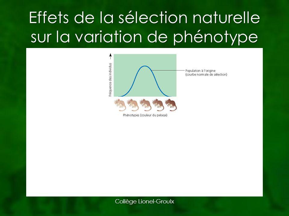 Effets de la sélection naturelle sur la variation de phénotype