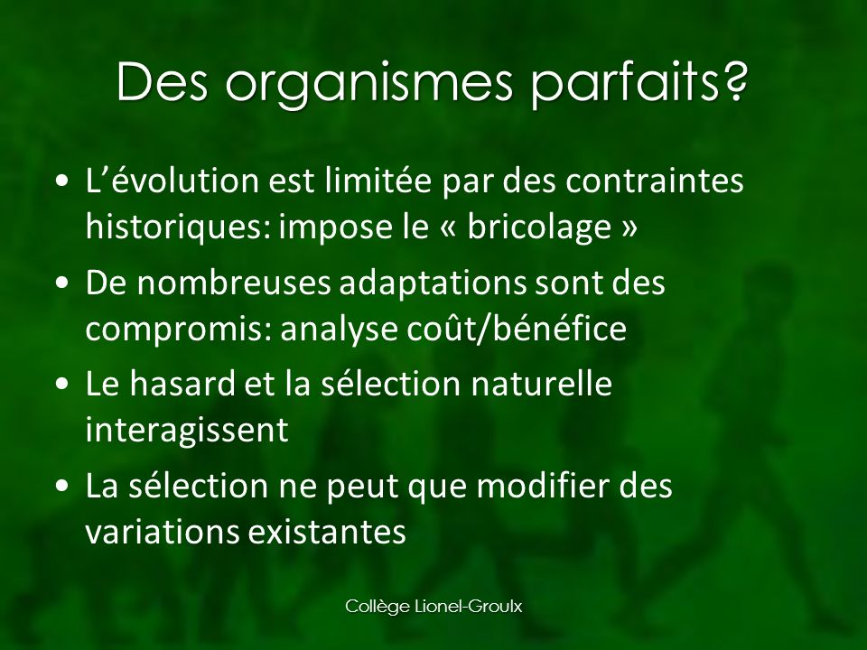 Des organismes parfaits