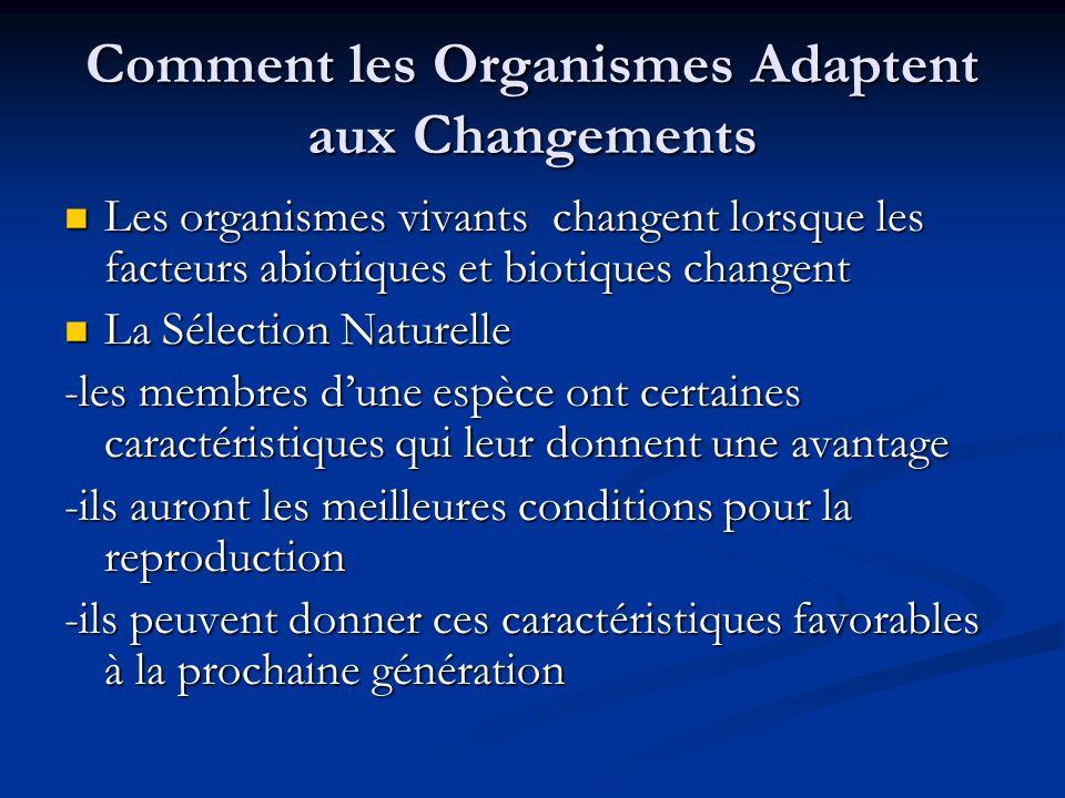 Comment les Organismes Adaptent aux Changements