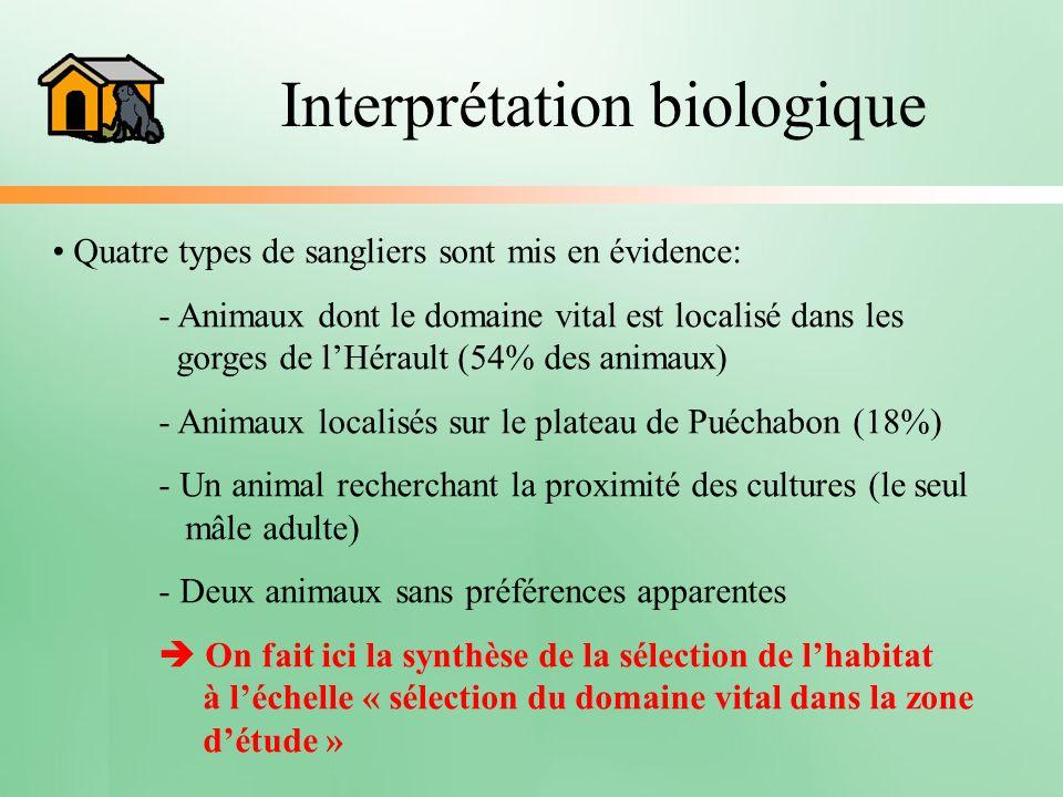 Interprétation biologique